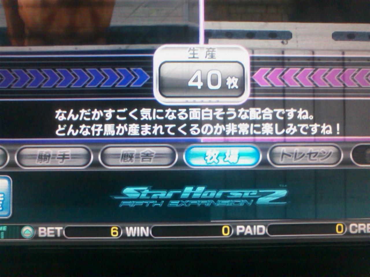 SA3E0180.jpg