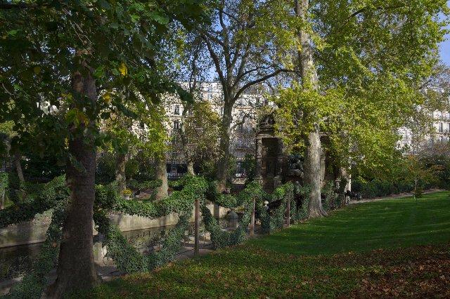 秋のリュクサンブール公園:木