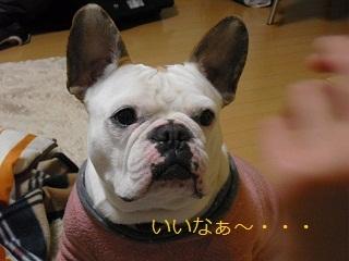 2010_0304_184819-CIMG0354.jpg