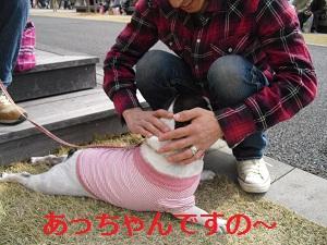 2010_0314_105931-CIMG0362.jpg