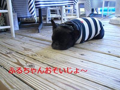 2010_0327_174839-CIMG0377.jpg