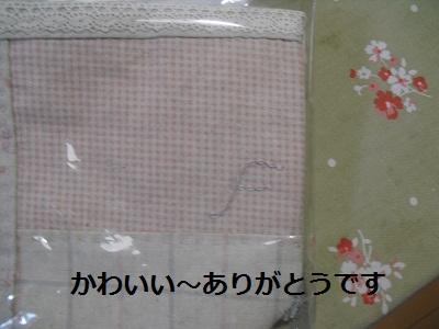 2010_0327_195842-CIMG0413.jpg
