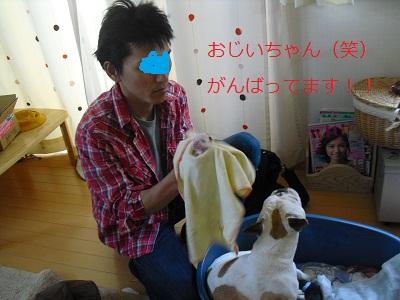 2010_0508_161401-CIMG0507.jpg
