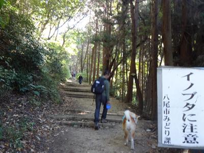 b_20141121_04.jpg