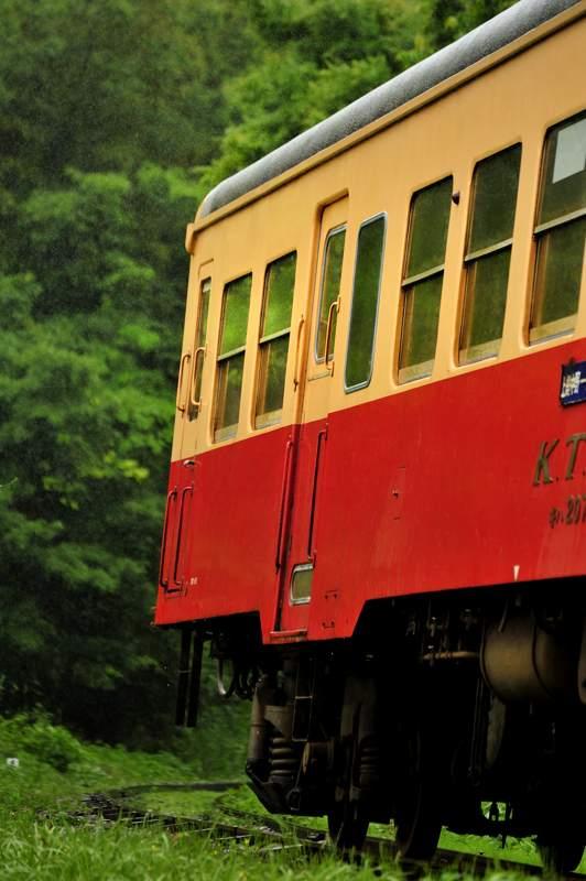 kominata20120609_314 take1b