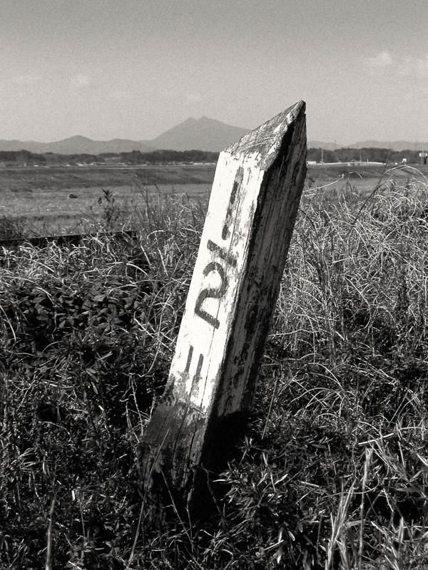 P2115417kashimayakimaki1b2.jpg