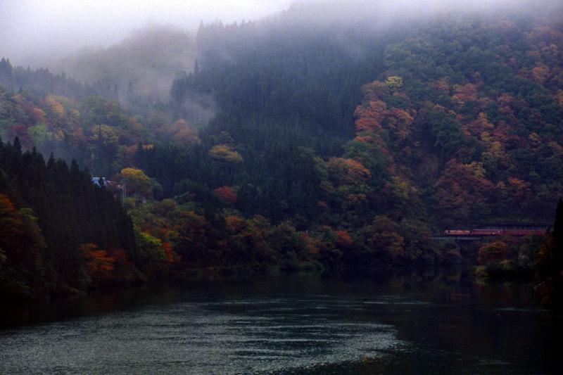 bansaitokusawaaki1.jpg