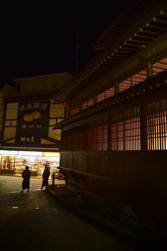 iiyama201211_110b.jpg