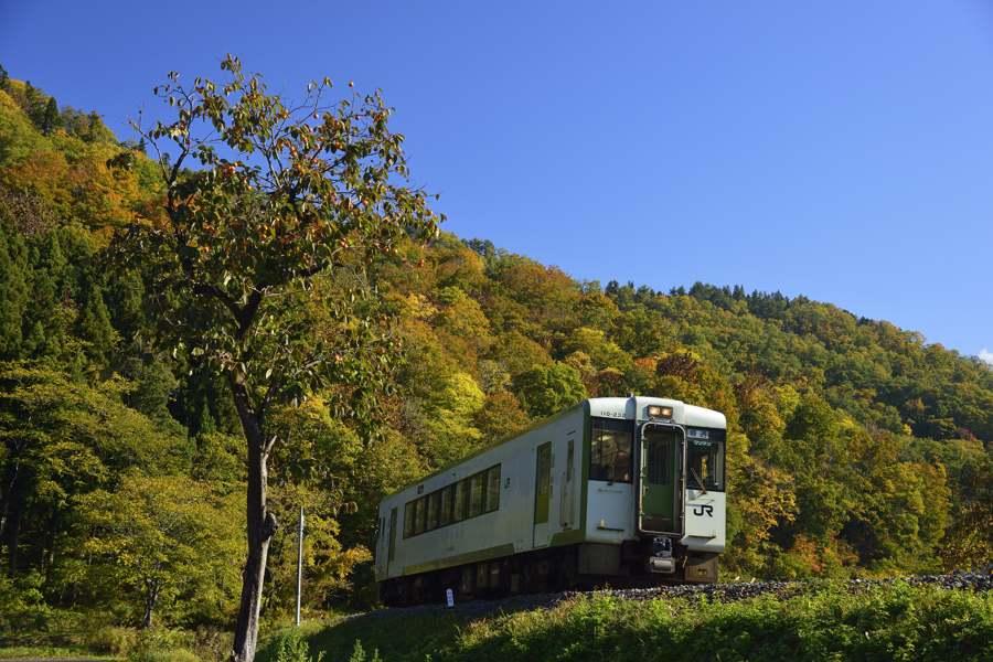 iiyama201211_153b.jpg