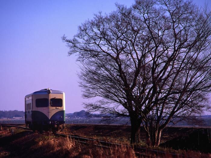 kashima20073.jpg