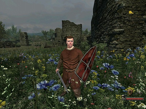 wb_calradia_ in_darkness_moreflower