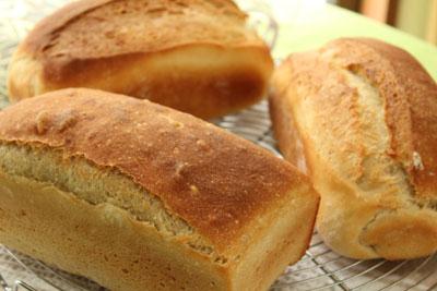 フェンネル&米粉食パン