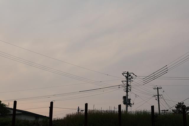 IMG_1421_R.jpg