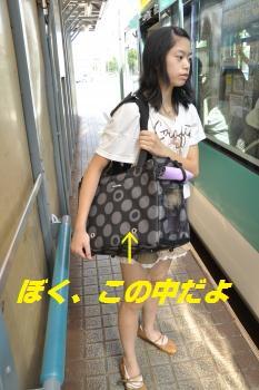 _DSC0087_convert_20110926095325-0.jpg