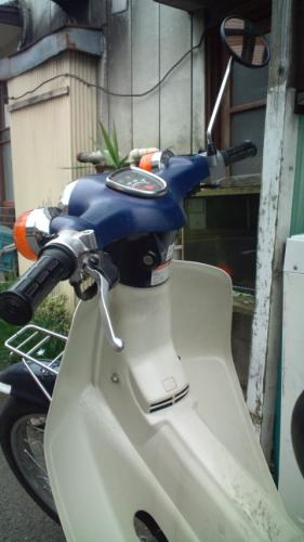 F1000006.jpg