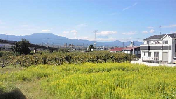 田島分譲地富士山