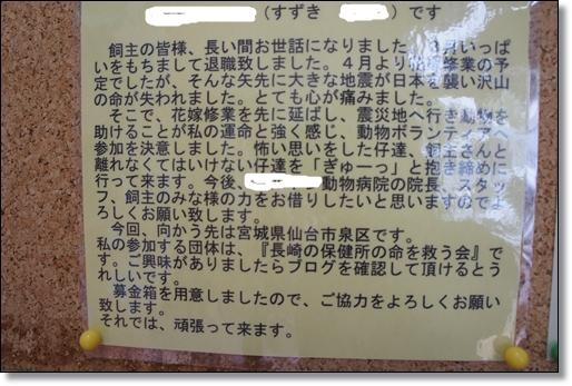 201105021.jpg