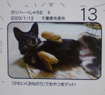 PAP_0062.jpg