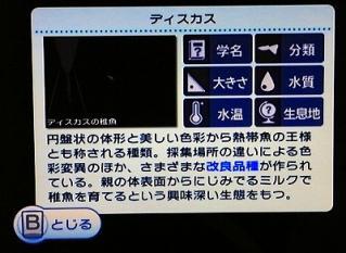 アクアリビング_図鑑_ディスカスの稚魚