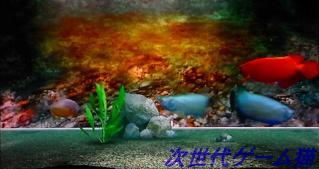 ブルーオアシス水槽1