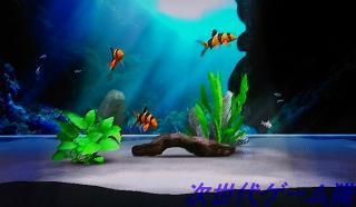 ブルーオアシス水槽2