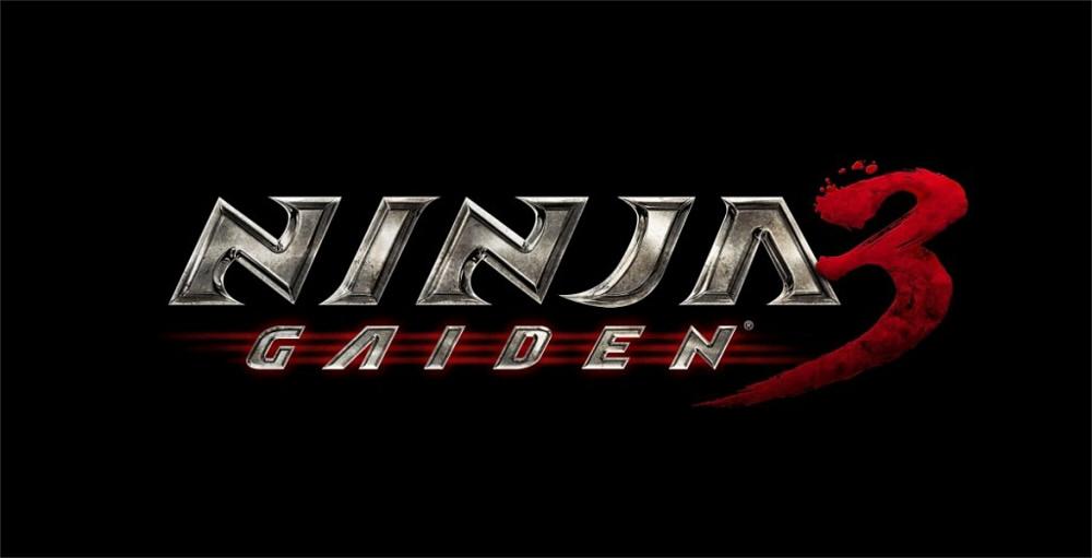 ninja-gaiden-3.jpg