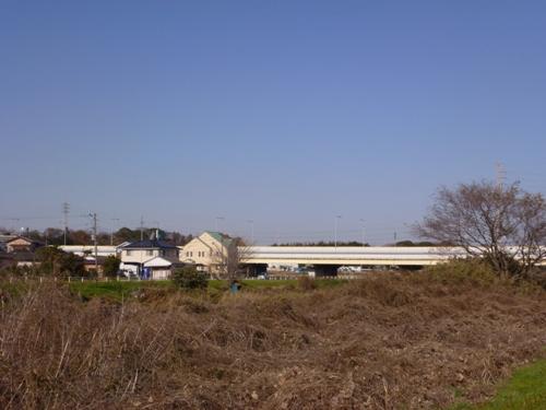P1000642.jpg