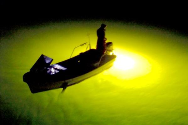 吉野川シラス漁05