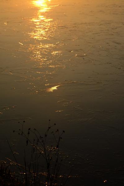 氷結の朝08