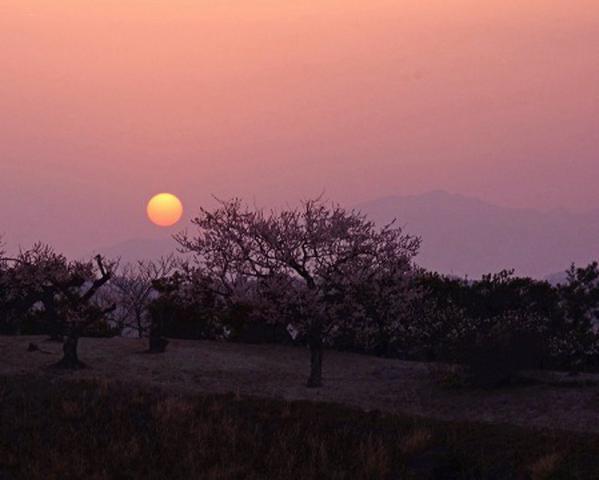 黄砂の夜明け