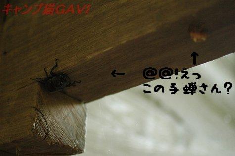 100717_2131.jpg