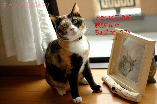 100923_6998.jpg