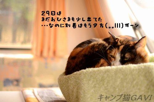 101229_0037.jpg