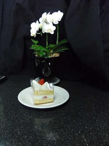 胡蝶蘭とショートケーキ