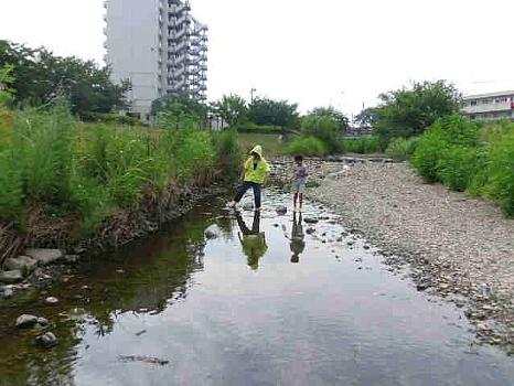 空堀川の魚とり