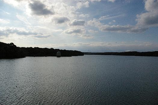 秋の多摩湖1