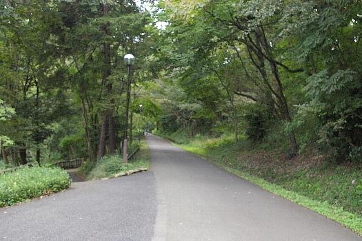 多摩湖への道その3