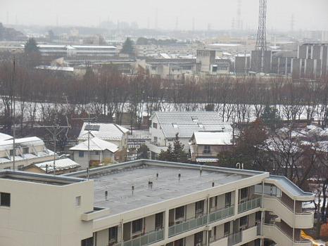 2度目の雪