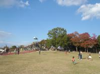 広い芝生&遊具