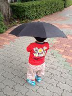 本物の傘1