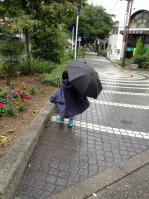 本物の傘2