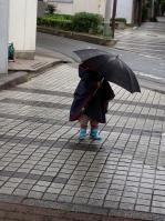 本物の傘3