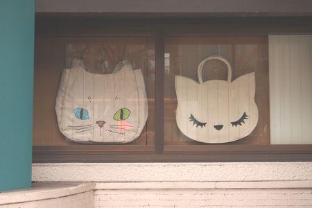 猫の鞄1 (C)表参道・青山・原宿・外苑前・渋谷・源保堂鍼灸院 肩こり・腰痛・頭痛・生理痛