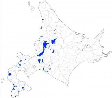 北海道稲作地帯
