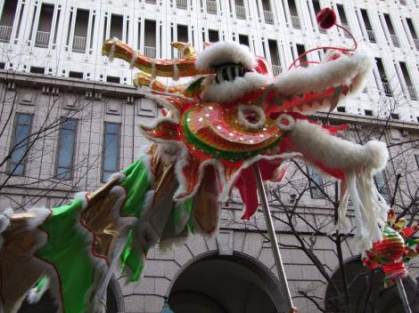le-dragon-court4.jpg
