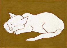 un-chat-blanc.jpg