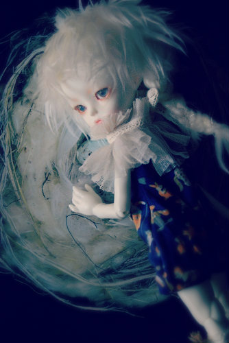 kotori5.jpg