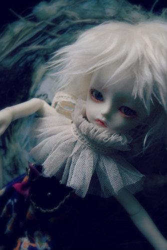 kotori6.jpg