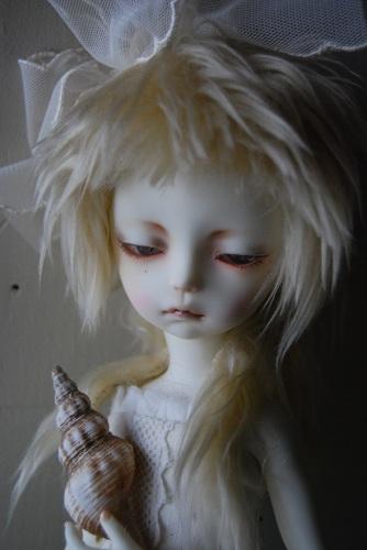 tsuki-shell5.jpg