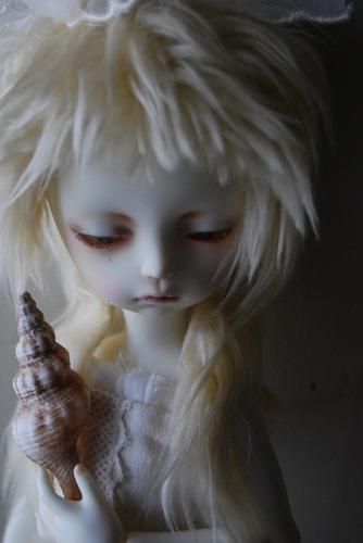 tsuki-shell6.jpg